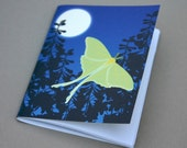 Luna Moth mini-notebook Pocket Notebook Art Butterfly Bug Insect Night Full Moon Blue Lime Green Chartruese Summer