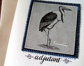 New Baby Stork Greeting Card, Arnold Adjutant Bird Calligraphy Card to frame or send by KisforCalligraphy