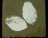 monotype print of an autmn leaf on handmade Japanese paper