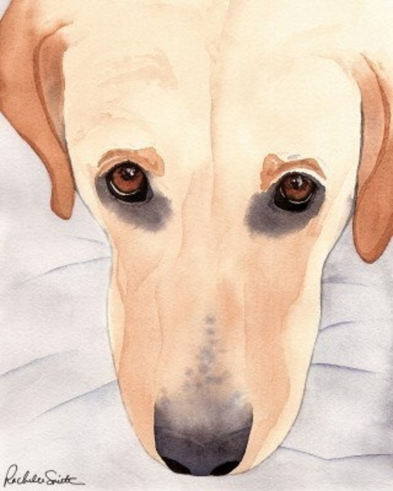 Labrador Retriever (Yellow Lab) dog art print from watercolor painting by Rachelle Smith plus FREE card