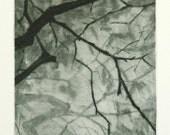 Tree no. 2 - Original drypoint