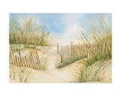 Cape Cod Dunes and Fence