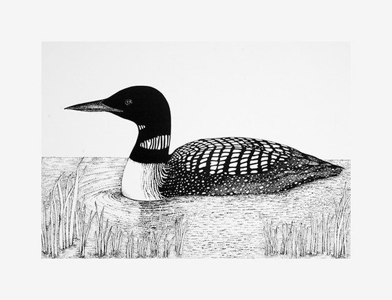 Loon Drawing Common loon Red Throated Loon