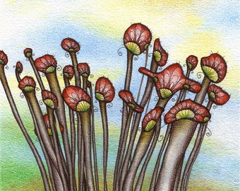 Mushroom Art - Cluster - ORIGINAL watercolour, ink and coloured pencil illustration - Fungi at Sunrise