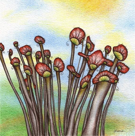 Mushroom Art - Cluster - ORIGINAL watercolour, ink and coloured pencil illustration - Fungi at Sunrise