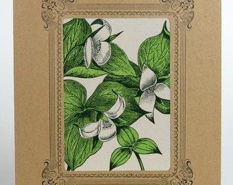 TRILLIUM Flower Letterpress PRINT in an 8x10 inch Kraft Letterpress VIGNETTE