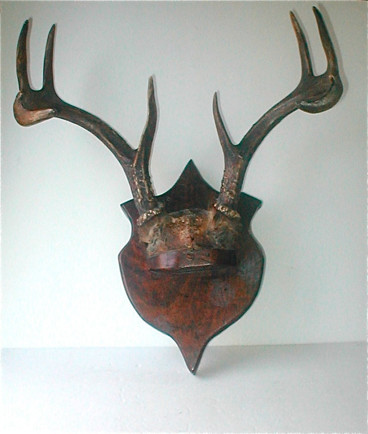 Deer Antler Mount Vintage Rustic 50s By Studiostebbylee On
