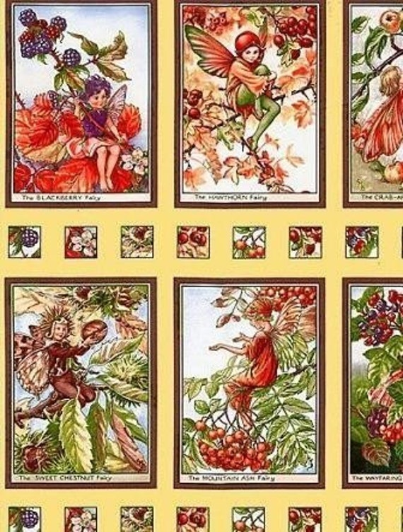 FLOWER FAIRIES AUTUMN BERRIES 12 SQUARES PANELS MICHAEL MILLER CICELY MARY BARKER
