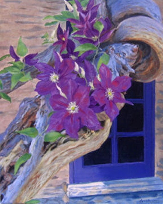 Pretty Purple Clematis surrounded by weathered wood Giclee Reproduction 14x11