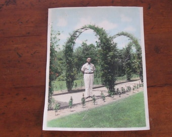 Vintage Tinted Photograph of Man Under Trellis in Garden