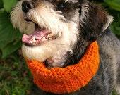 SALE - DOG mobius scarf Size Small/Medium - Hunter's Orange