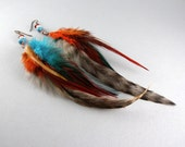 Turquoise and Hot Cinnamon Feather Earrings with Free USA Shipping