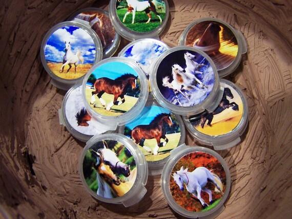 Horse Show Birthday Glitter Gel Pots Party Favors 12pk