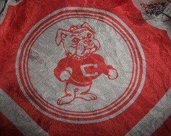 VINTAGE CENTRAL STATE COLLEGE SILKY SCARF