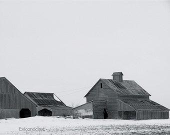 Rural Geometry III, CR1500, McLean County, Illinois