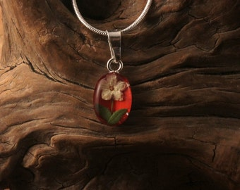 Sterling Silver Dried Elder Flower Oval Red Pendant