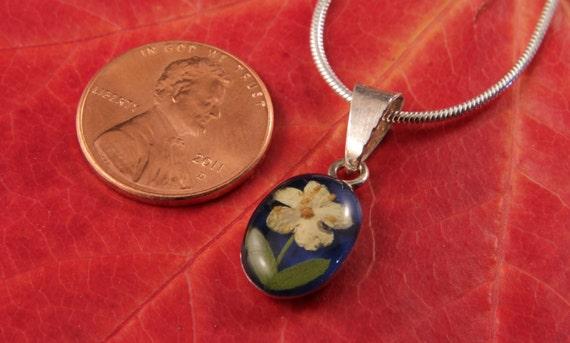Sterling Silver Dried Elder Flower Oval Blue Pendant