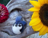 Custom order-Needle Felted Round Blue Jay, cardinal and goldfinch