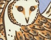 BARN OWL blank bird greeting card