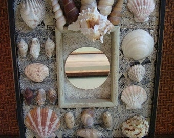 Shell Mirror in Black and Grays,  Mirror and Seashells