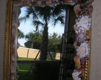Seashell Mirror, Wall Mirror, Foyer Mirror, Entryway Mirror, Mirror Decorated with Seashells, Miroir, Espejo