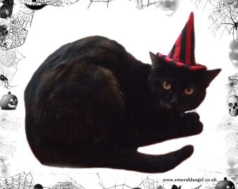 Stripes Pet Witch Hat, Halloween, Pet Costume