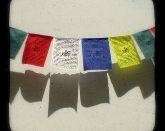 Tibetan Prayer Flags Photography Print 4x4 TtV Rainbow Flags Colorful Buddhist Photo Print Peace Flags Green Red White Blue Yellow - Shadows