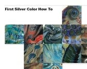 SE1 - First Silver Color How To eBook