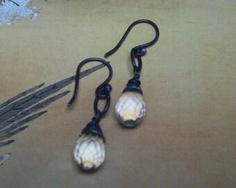 Seattle Mist Amethyst Earrings