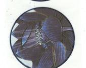 Blue Lotus stickers (Set of 5)