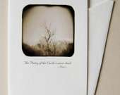 Desert Tree, 4x6 blank greeting card, inspirational poetry quote by John Keats
