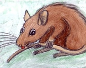Mad Ratter- crazy rat licking its tail original ACEO