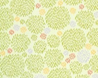 ORGANIC Safari Sweet Cotton Fabric -- Green