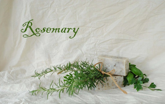 Rosemary Goat Milk Soap, Herbal Essential Oil Bar