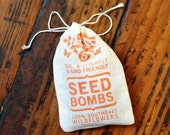 Seed Bombs - Southeast Bird Bee and Butterfly Friendly DIY Guerrilla Gardening Seeds Seed Balls
