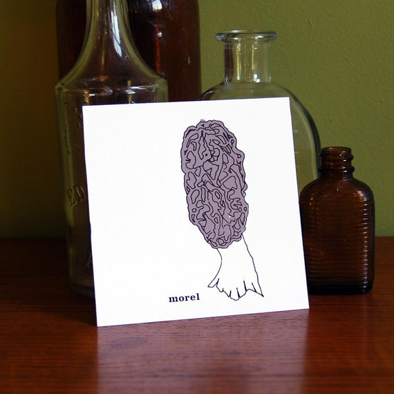 Morel Print from the Wild Edibles Series
