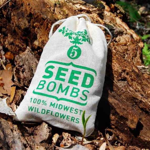 Midwest Seed Bombs