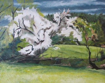 "Large Oil Painting Landscape Impressionist  Original Apple Tree Spring White Blossom Quebec Canada Fournier "" Blooming In The Wind 24 x 30"