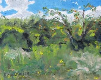 "Art Small Plein Air Landscape Oil Painting Original  Appalachian Tree Quebec Canada By Fournier Tree Impressionist "" Wild Apples "" 10 x 12"