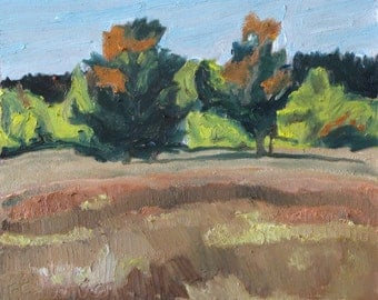 "Art Original Small Plein Air Landscape Oil Painting FREE SHIPPING Eastern Townships Quebec Canada Fournier "" Fall Flaming Trees "" 10"" x 12"""