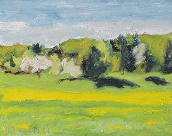 "Art Plein Air Oil Painting Landscape Small Original Spring Blossom Flower Canada Fournier Appalachian Quebec "" The Yellow Season "" 10"" x 12"""