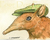 ACEO signed PRINT -  Elephant Shrew in a hat