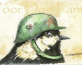 ACEO signed PRINT - Birds in Helmets n0. 4
