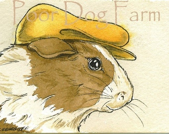 Guinea Pigs with hats Set  (SPECIAL  set of 4 ACEO PRINTS) (...and 1 you choose the rodent print)