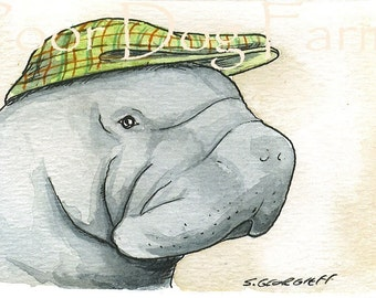 ACEO print- Manatee in a hat