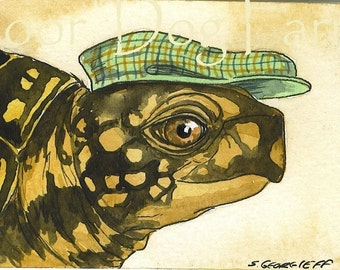 Another turtle in a hat 5 x 7 print