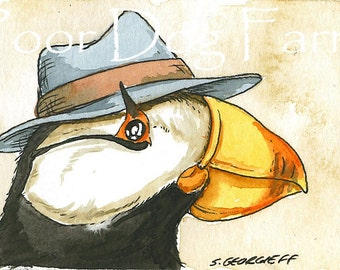 Horned Puffin in a hat 5 x 7 print