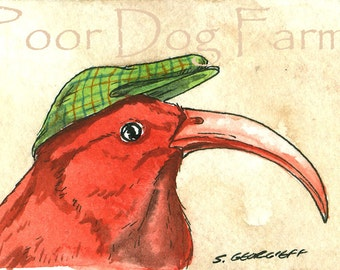 I'iwi in a hat - Original ACEO Painting