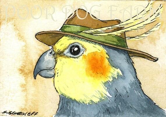 A Dapper Cockatiel with hat- 5x7 print