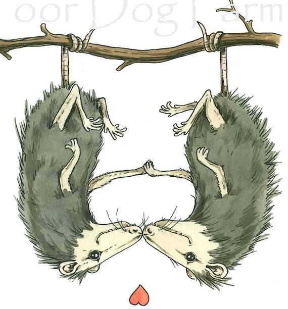 Possum Love  5x7